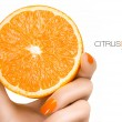 Female Hand Holding a Luscious Healthy Orange. Template Design — Stock Photo #66725949