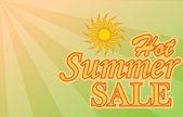 Hot Summer Sale banner — Stock Vector