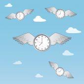 Time flies — Stock Vector