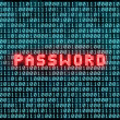 Password and binary code — Stock Photo #66795179
