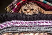 Pile of woolen clothes — Foto Stock