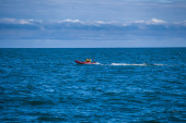 Whale watching offshore — Stockfoto
