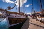 Whale-watching schooners — Stockfoto
