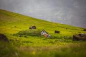 Eco friendly peat house — Stock Photo