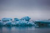 Pływające góry lodowe niebieski — Zdjęcie stockowe