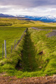 Drainage ditch between lush pastures — Stock Photo