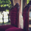 Two old vintage wedding chairs — Stock Photo #54564369