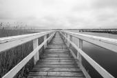 Embarcadero blanco — Foto de Stock