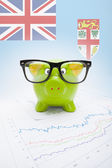 Piggy bank with flag on background - Fiji — Stock Photo