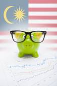 Piggy bank with flag on background - Malaysia — Stock Photo