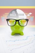 Piggy bank with flag on background - Swaziland — Stock Photo