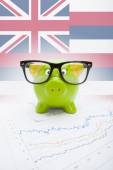 Piggy bank with US state flag on background - Hawaii — Stock Photo
