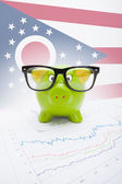 Piggy bank with US state flag on background - Ohio — Stock Photo