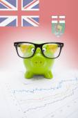 Piggy bank with Canadian province flag on background - Manitoba — Foto de Stock