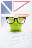 Piggy bank with Canadian province flag on background - Newfoundland and Labrador — Stock Photo