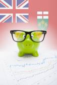 Piggy bank with Canadian province flag on background - Ontario — Foto de Stock