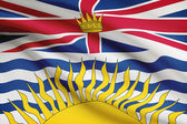 Canadian provinces flags series - British Columbia — Stock Photo