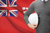 Engineer with flag on background series - Ontario — Foto Stock