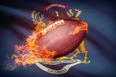 American football ball with flag on backround series - Michigan — Stock Photo