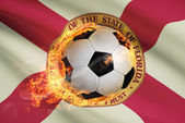 Soccer ball with flag on background series - Florida — Stock Photo