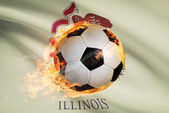 Soccer ball with flag on background series - Illinois — Stok fotoğraf