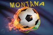 Soccer ball with flag on background series - Montana — Stock Photo