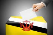 Voting concept - Ballot box painted into national flag colors - Brunei — Stock Photo
