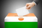 Voting concept - Ballot box painted into national flag colors - Niger — Stock Photo