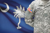 American soldier with US state flag on background - South Carolina — Stock Photo