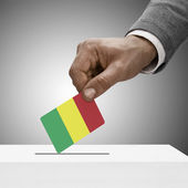 Black male holding flag. Voting concept - Mali — Стоковое фото