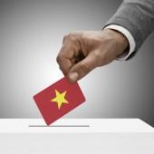 Black male holding flag. Voting concept - Vietnam — Stock Photo