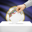 Ballot box with US state flag on background - Minnesota — Stock Photo #71541879