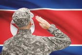 Soldier in hat facing national flag series - North Korea — Stock Photo