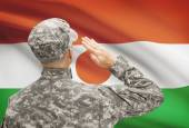 Soldier in hat facing national flag series - Niger — Stock Photo
