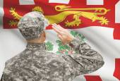 Soldier saluting to Canadial province flag series - Prince Edward Island — Stock Photo