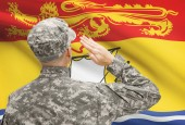 Soldier saluting to Canadial province flag series - New Brunswick — Stock Photo