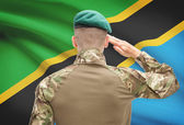 National military forces with flag on background conceptual series - Tanzania — Stock Photo