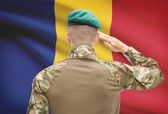 National military forces with flag on background conceptual series - Romania — Stock Photo
