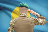 National military forces with flag on background conceptual series - Palau — Stock Photo