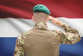 National military forces with flag on background conceptual series - Netherlands — Stock Photo
