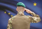 Soldier saluting to USA state flag conceptual series - Alaska — Stock Photo
