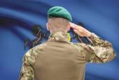 Soldier saluting to USA state flag conceptual series - Pennsylvania — Stock Photo