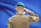 Soldier saluting to Canadial province flag conceptual series - Alberta — Stock Photo