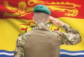 Soldier saluting to Canadial province flag conceptual series - New Brunswick — Stock Photo
