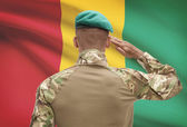 Dark-skinned soldier with flag on background - Guinea — Stock Photo