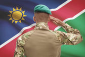 Dark-skinned soldier with flag on background - Namibia — Stock Photo