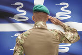 Dark-skinned soldier with flag on background - Martinique — Stock Photo