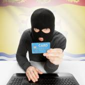 Hacker with credit card in hand and Canadian province flag - New Brunswick — Stock Photo