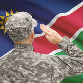 Soldier in hat facing national flag series - Namibia — Stock Photo