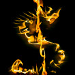 Dollar sign made of fire flames — Stock Photo #68154495